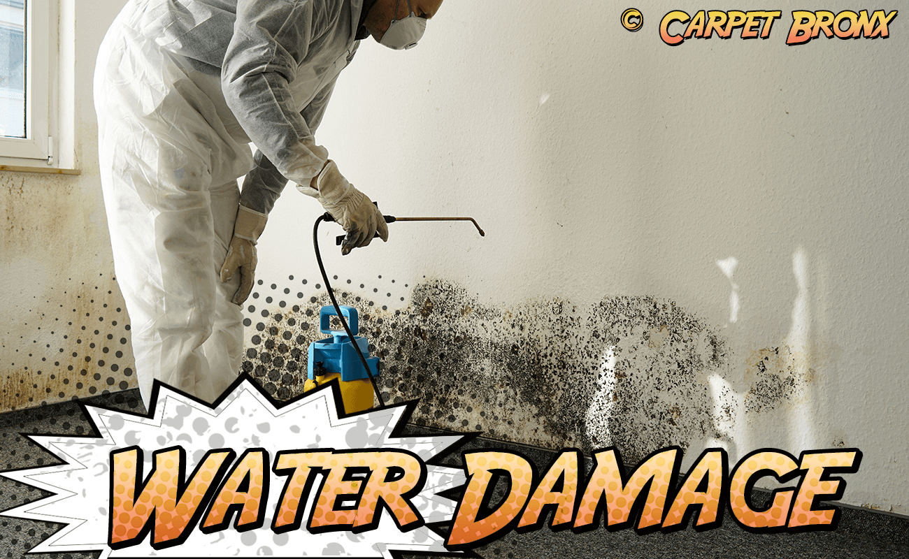 Water Damage Repairs on Carpets and Rugs