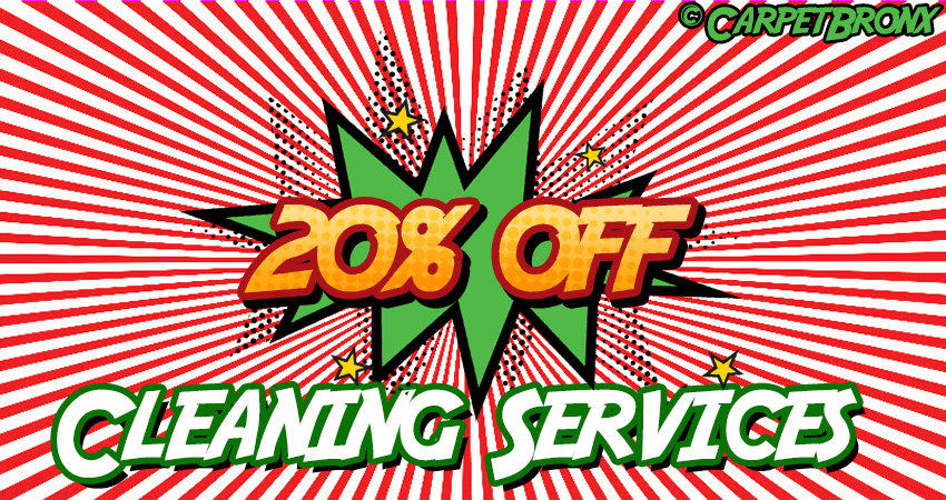 20 Percent OFF All Cleaning Service - Bronx